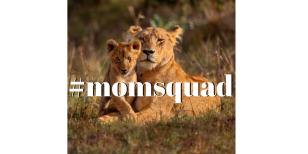 #momsquad